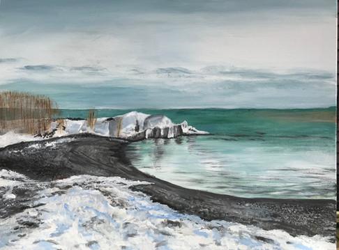La plage en hiver- Toronto