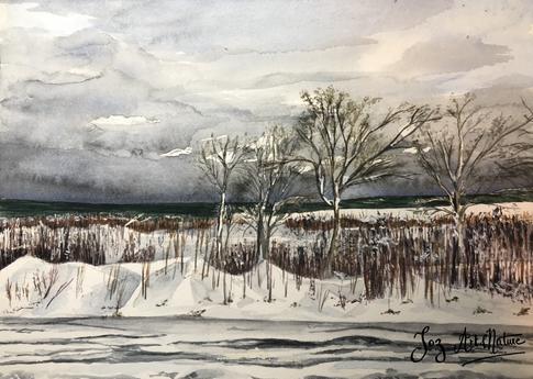 Grisaille d'hiver au Leslie Spit