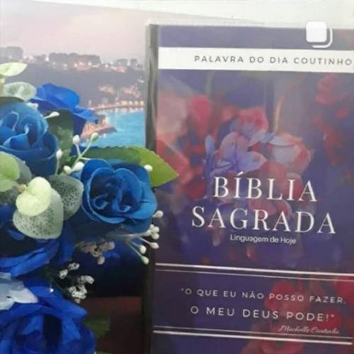 Bíblia Palavra do dia (Flor) NTLH