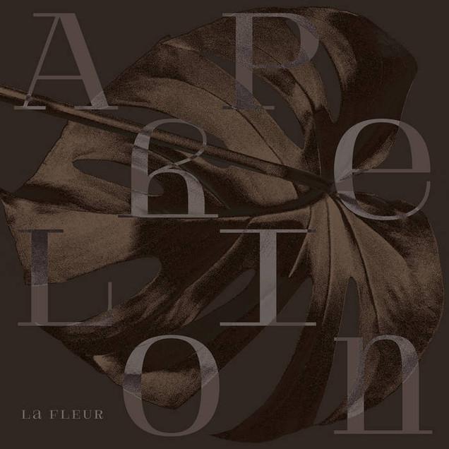 PPR009RMX Aphelion EP - Remixes