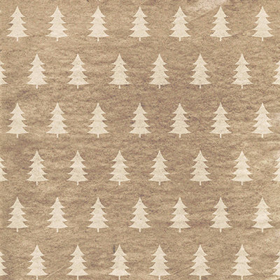 Christmas Craft #11 EAV-609