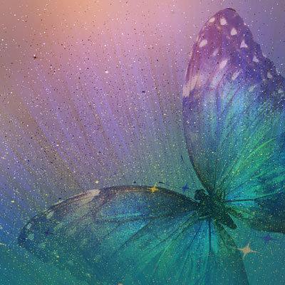 Magical Butterfly EAV-895