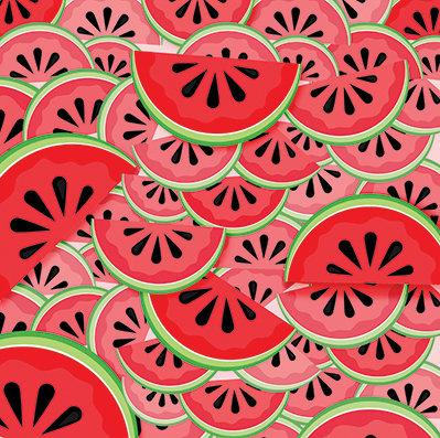 Watermelon Fresca #2
