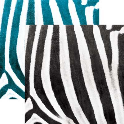 Zebra EAV-1119