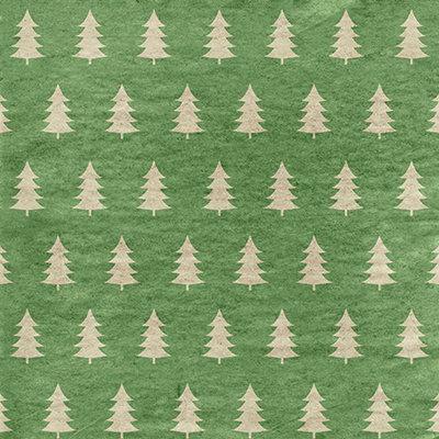 Christmas Craft #1 EAV-599