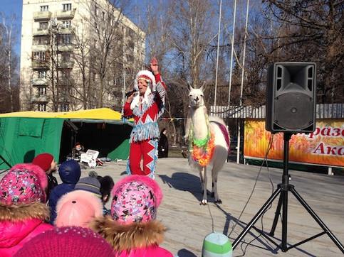 шоу с ламой на празднике в Москве