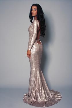 Natasha Dress V.2