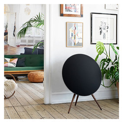 Bang-Olufsen-BeoPlay-A9-5