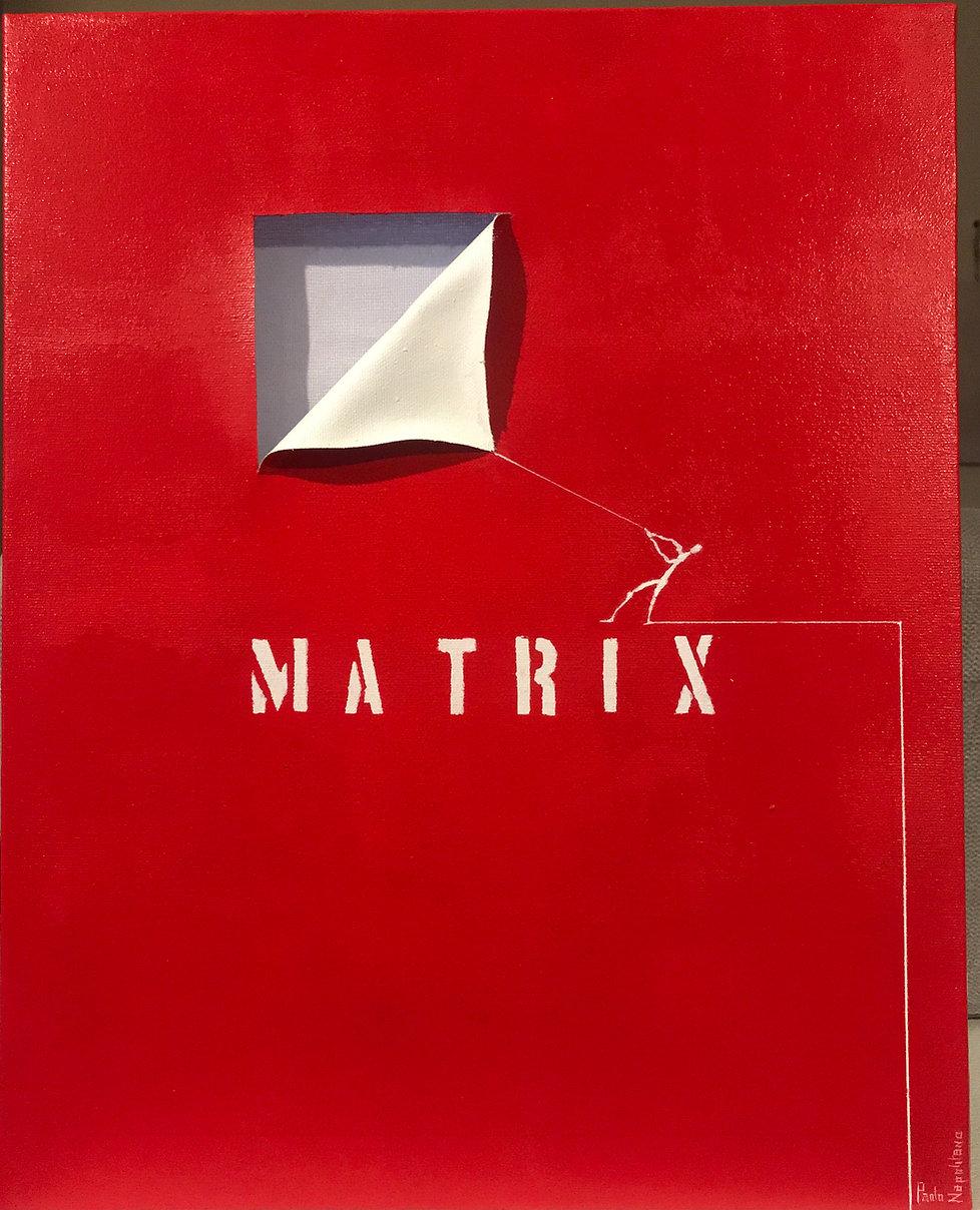 016 - 23 03 20 - 40x50 matrix.JPG