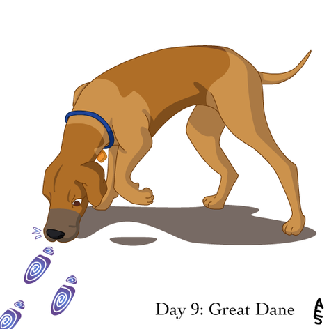 Day9: Great Dane