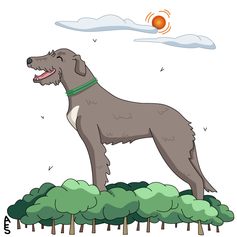 Day6: Irish Wolfhound