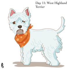 Day11: Westie