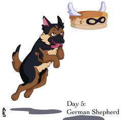 Day5: German Shepherd