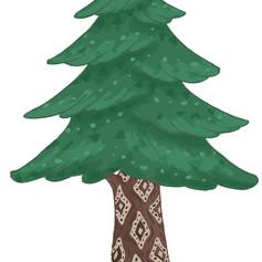 Fir Tree Design