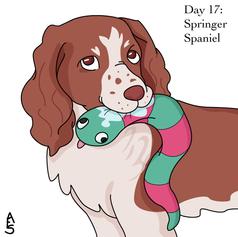 Day17: Springer Spaniel