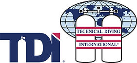 Logo_TDI_Combo_Color_Large_RGB_v0217.jpg