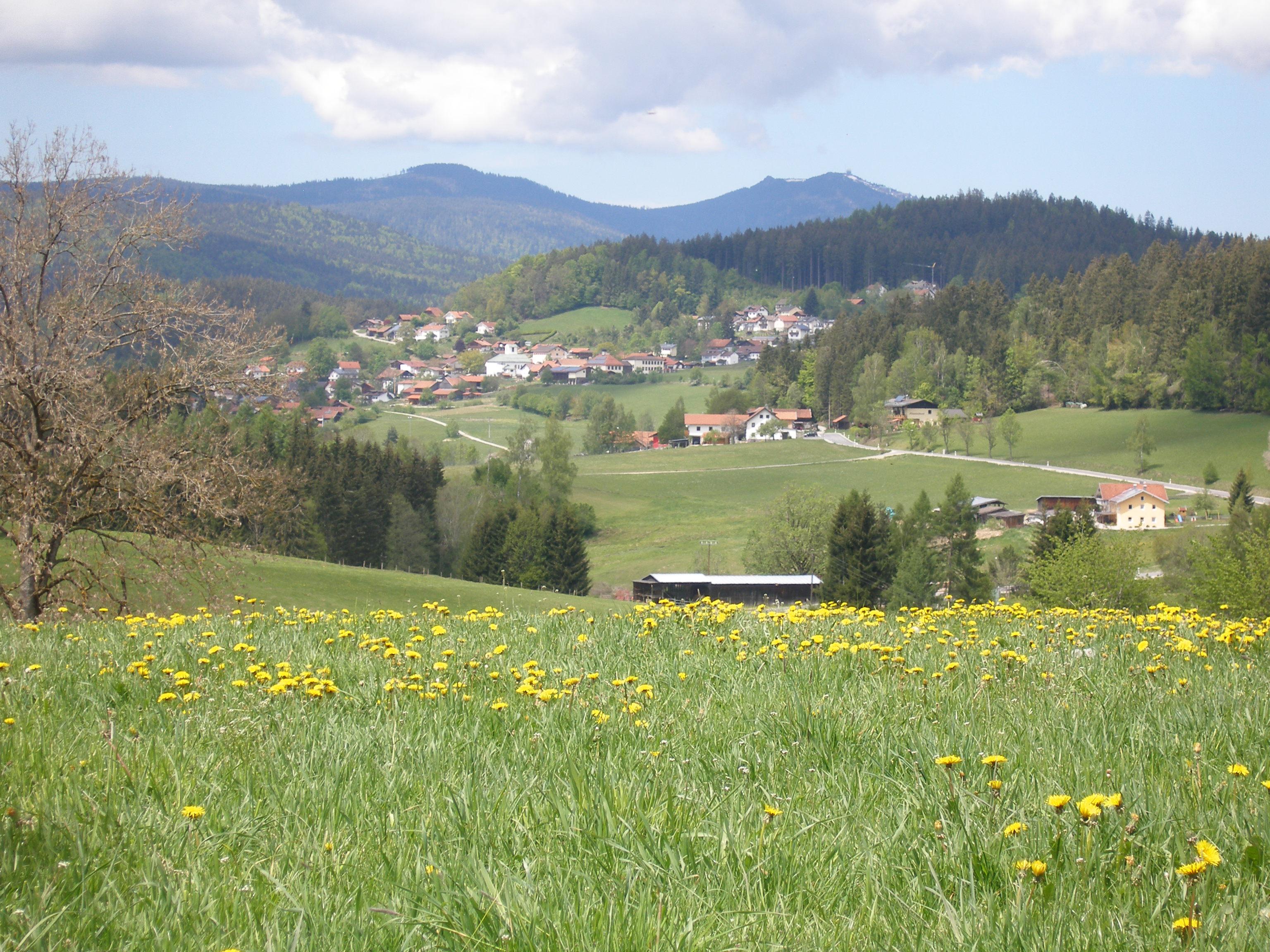 Ferienwohnung Beywl_Nationalpark Beihof.