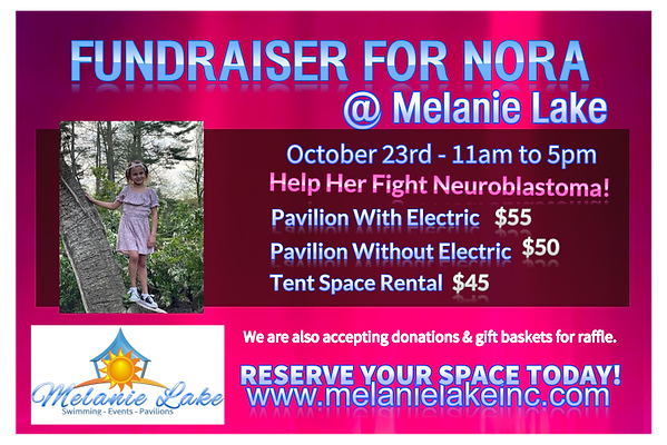 Nora Fundraiser Pavilion Space Rental with Electric October 23rd