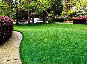 pic_lawn_maintenanceGabriel.jpg