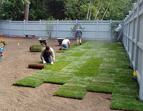 sod-install-minneapolis-mn.jpg