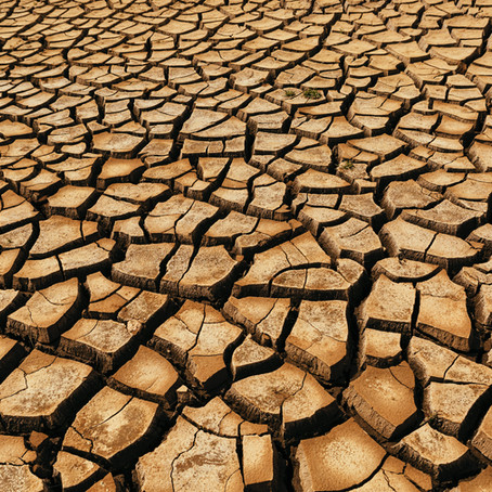 MERH's Webinar: Climate and Water Scarcity in North Africa