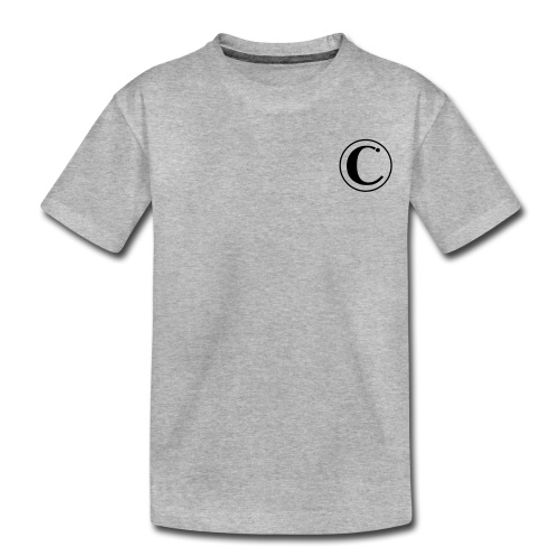 consequi clothing grey top.jpg