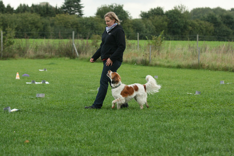 Impressionen Rally Obedience
