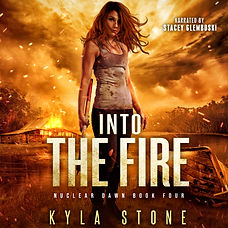 final into the fire audiobook.jpg