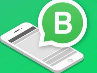 WhatsApp Business agora permite que empresas criem catálogo de produtos dentro do app