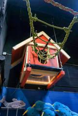 wookie the sloth exhibit.jpg