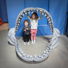 Shark Teeth East Idaho Aquarium