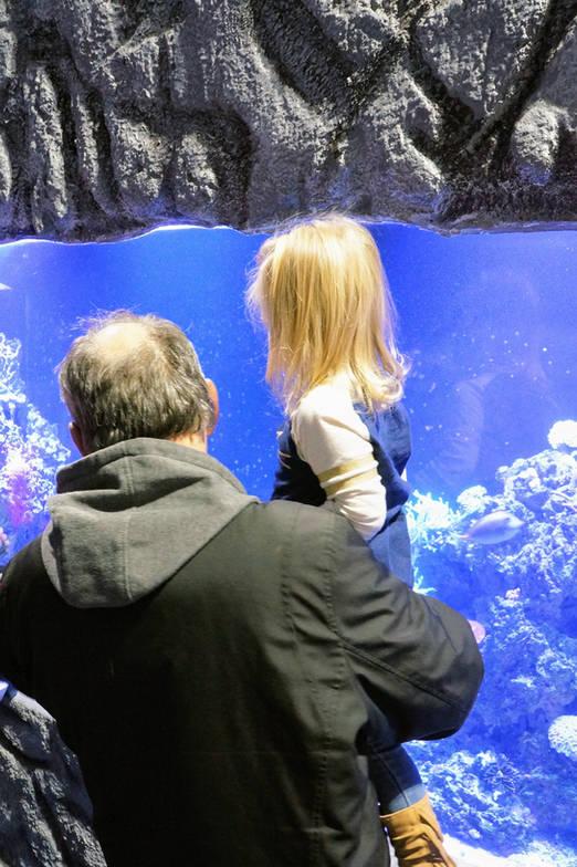 Explore East Idaho Aquarium