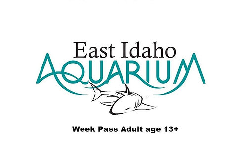 Week Pass Adult age 13+