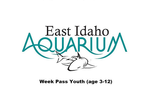 Week Pass Youth (age 3-12)