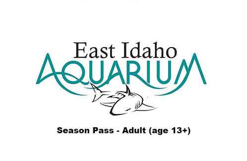 Adult Pass (age 13+)