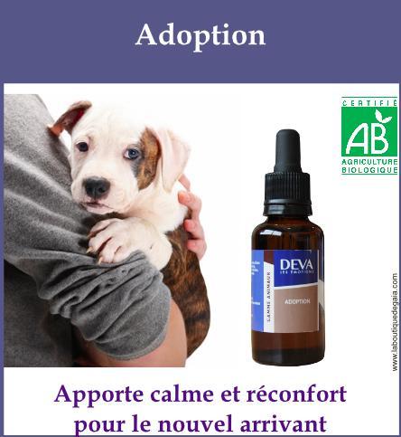 DEVA adoption