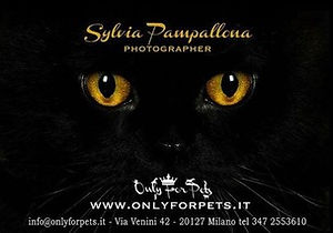 Sylvia Pampallona logo