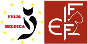 Felis Belgica logo