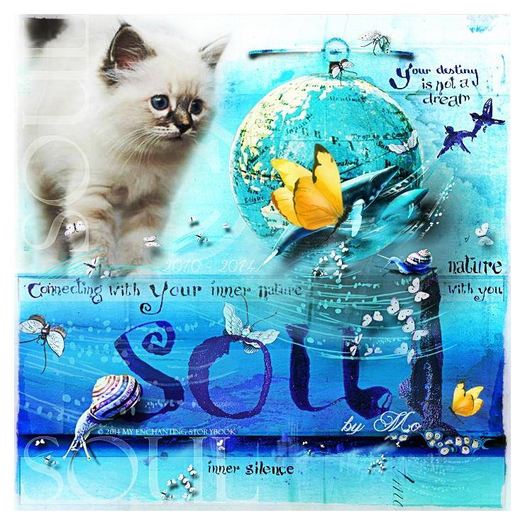 'Soul - Inner Silence'