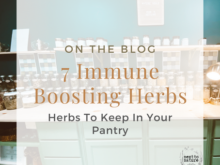 7 Immune Boosting Herbs and Spices for Your Pantry