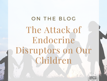 The Attack of Endocrine Disruptors on Our Children