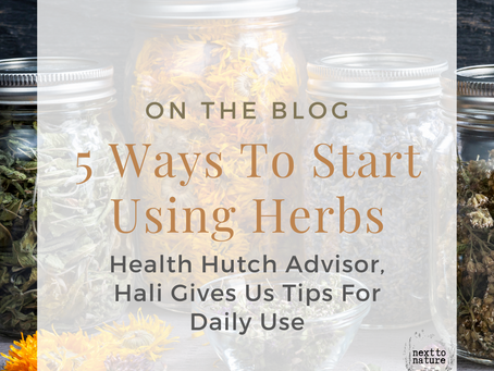 Five Ways to Start Using Herbs Each Day