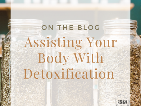 Assisting Your Body With Detoxification