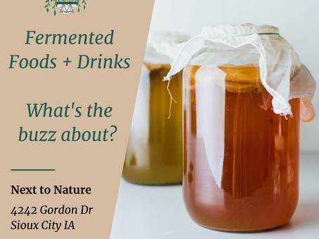 Fermented Food, Probiotics and What You Need to Know