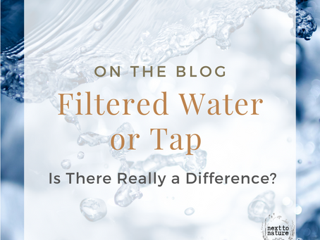 Filtered Water or Tap: Is There Really a Difference?