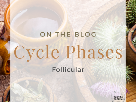 The Cycle Phases: Follicular