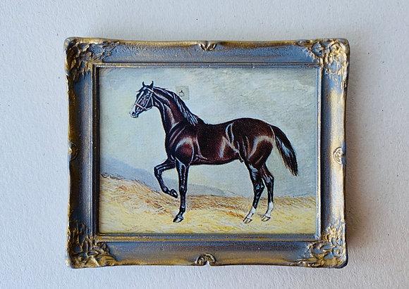 Framed Print -Horse