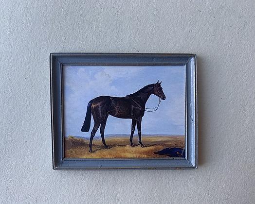 Black Horse in Grey Frame