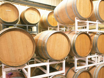 French and American oak barrels currently maturing our 2019 reds