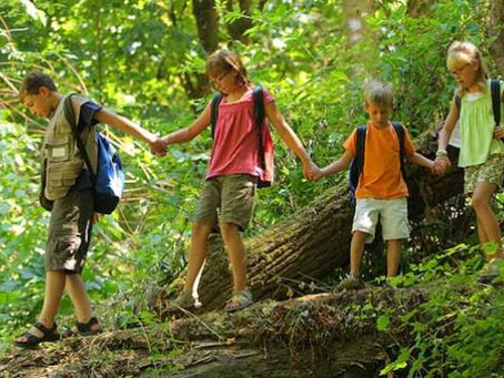 Hiking With Young Children